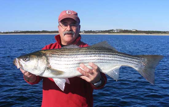 Photos from charter trips by our fishing captains for Head boat fishing near me